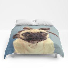 Lola Bow Comforters