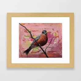 American Robin #2 Framed Art Print