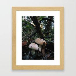 Mushroom Love Framed Art Print