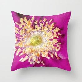 Beach Rose (Rosa rugosa) close up Throw Pillow