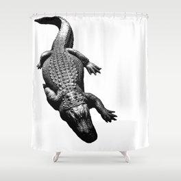 Alligators Love to Swim Shower Curtain