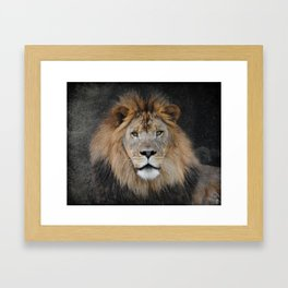 Male Lion Portrait Framed Art Print