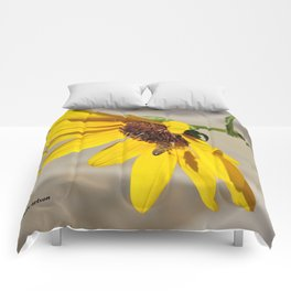 Desert Sunflower Pollen Shop Comforters