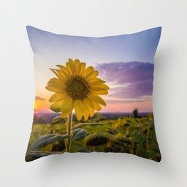 Sunflower against sunset Throw Pillow
