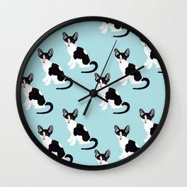 Cornish Rex Kitten Blue Wall Clock