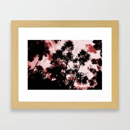 Redwood Framed Art Print