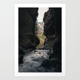 The Rush - Ouray, CO. Art Print