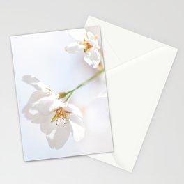Sakura Blooming Stationery Cards