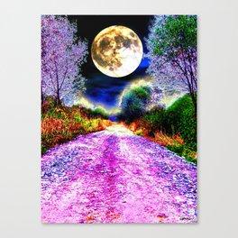 Moonlight Pathway Canvas Print