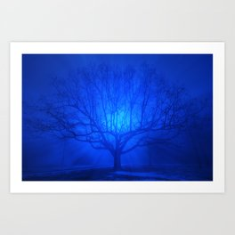 Foggy Blue Tree Art Print