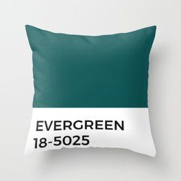 Evergreen • Paint Chip • Pantone Inspired • Cool Tones • Fresh • Forest Throw Pillow