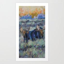 Moose, Tetons Art Print