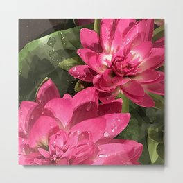 Red-Magenta Lily Pads in Pond Metal Print