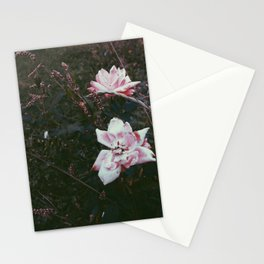 Decaying Rose Stationery Cards