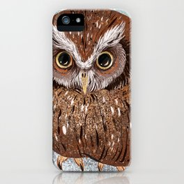 Painted Owl iPhone Case
