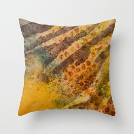 Zebra Spots Throw Pillow