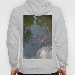 Don't Need To Be Koi, Roy Hoody