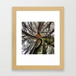 Print #17 Framed Art Print