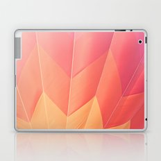 Summer Hot Air Balloon Laptop & iPad Skin