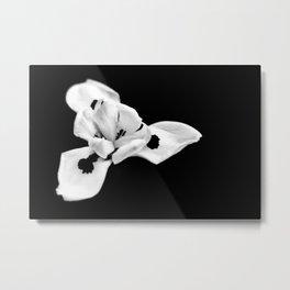 Black & White Metal Print