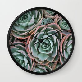 Pink & Green Succulent Garden Wall Clock