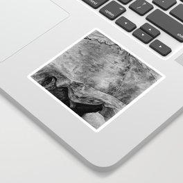 Skull - Close Up Profile Sticker