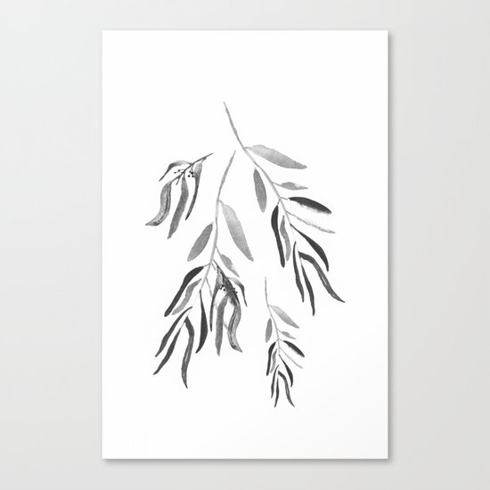 Eucalyptus Branches II Black And White Canvas Print