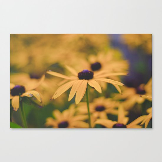 Its all Yellow Canvas Print