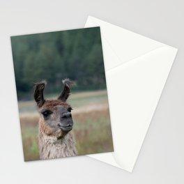 Llama Portrait - 1 Stationery Cards