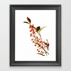 A Fruitful Life Framed Art Print