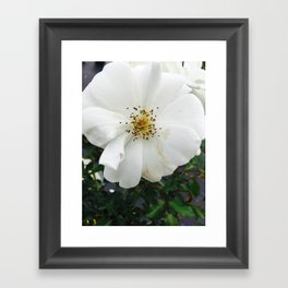 Nothing's perfect Framed Art Print