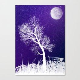 Pale Moon, Pale Birch Canvas Print