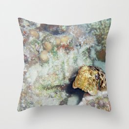 Baby Cuttlefish and Hard Coral Throw Pillow