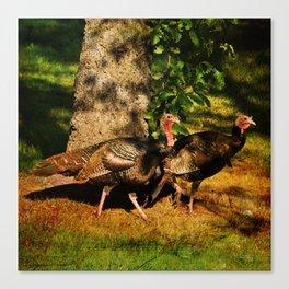 Turkey Trot Canvas Print