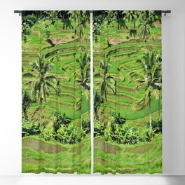 greenery paddy fields rice crops Blackout Curtain