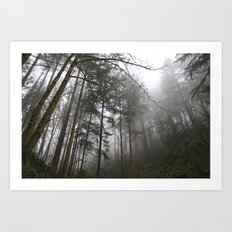 Forest Fog in Portland Art Print