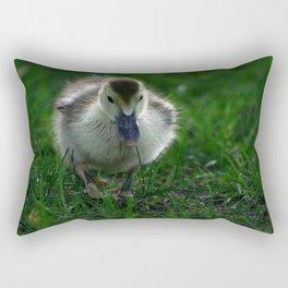 Cute Duckling Walking on a Lawn Rectangular Pillow