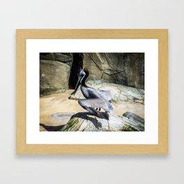 Flapping Bird Framed Art Print