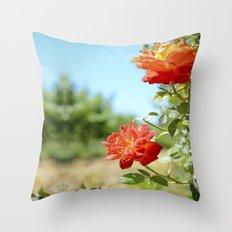 Roses in Santa Ynez California Vineyard Throw Pillow