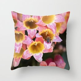 Tangerine Beauty Cross Vine with a Bumblebee Throw Pillow