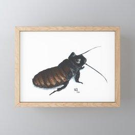 Madagascar Hissing Cockroach Framed Mini Art Print