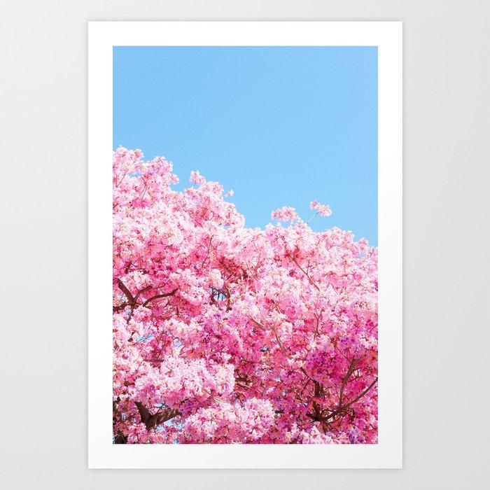 Tree in Bloom Art Print