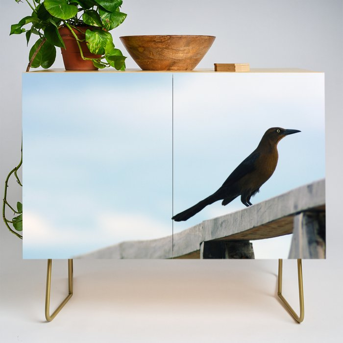 Bird collection _ 01 Credenza