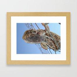Chameleon Understudy Framed Art Print