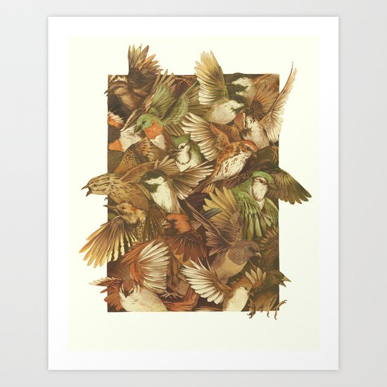 Red-Throated, Black-capped, Spotted, Barred Art Print