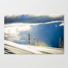 r3 Canvas Print