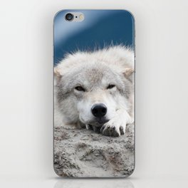Sleepy Wolf iPhone Skin