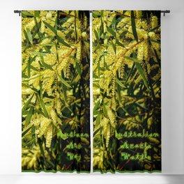 Wattle - Australian Acacia Blackout Curtain