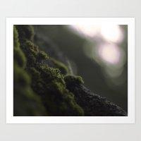 moss Art Prints featuring MOSS by Erin Graboski
