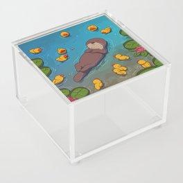 Otter Acrylic Box